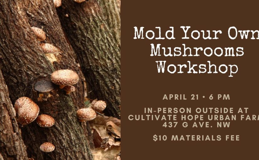 Mold your own mushrooms